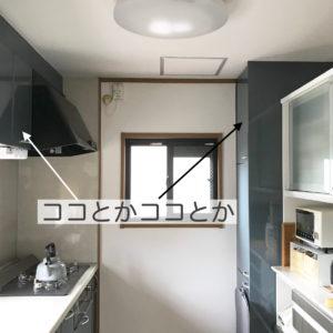 デッドスペースの戸棚